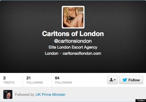David Cameron Twitter escort agency